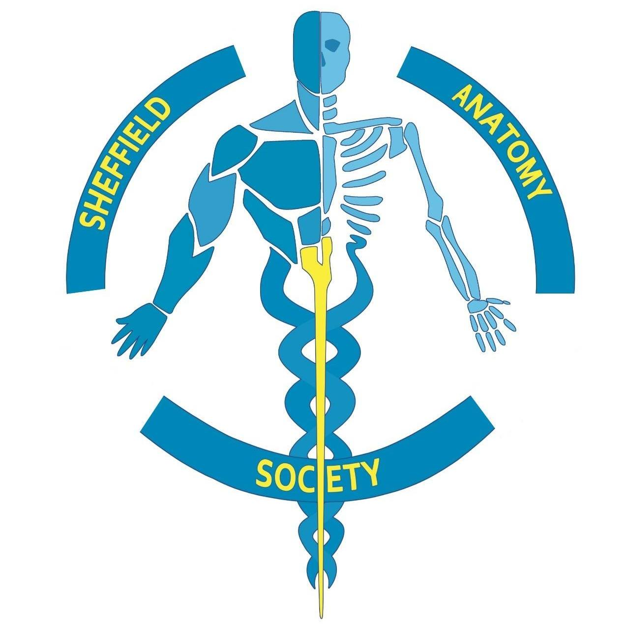 Anatomy Society thumbnail
