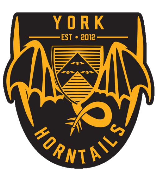 Quidditch Society (York Horntails) thumbnail